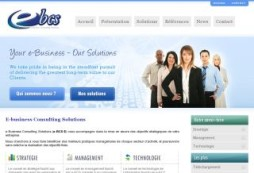 e-Business Consulting Solutions
